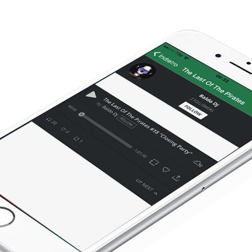 App Radio Fly Web